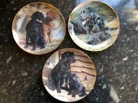 7 Nick Hemming Limited Edition Numbered Labrador Dog Display Plates