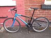 15 inch Raleigh Mountain bike, 3 x 6 speed