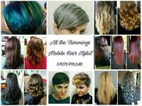 Mobile Hairdressing Service