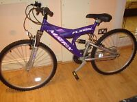 Purple Mountain Bicycle