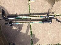 Trezeta walking pole pair