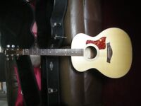 Taylor 214 with Taylor hard case