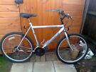Probike Escape mountain bike - excellent condition