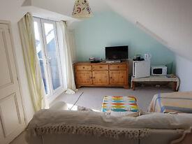 LARGE ATTIC LOUNG/BEDROOM W/BATHROOM/ BALCONY