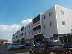 Fraser Ave 10111 -  1 & 2 Bedroom Apartments Starting at 1250.00