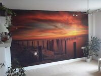 Polish painter decorator - private and commercial