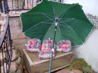 Sun umbrella and 4 garden seat cushions all. In good condition