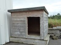 LARGE DOG KENNEL -- VERY SOLID CONSTRUCTION