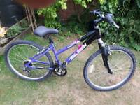 Raleigh free ride suspension mountain bike one of many quality bicycles for sale
