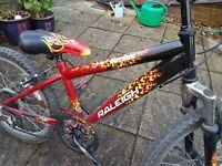 "Raleigh Hot Rod (HotRod) 20"" Wheel Boys Bike"