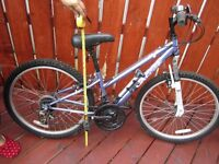 Bicycle for Boy or Girl