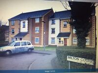 Lovely Modern 2 bedroom block of apartments to rent in Chadwellheath