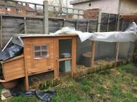 Chicken coup and extended run