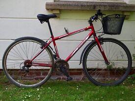 Bike for sale!