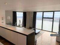 2 bedroom flat in Brook Street, Liverpool, L3 (2 bed) (#914688)