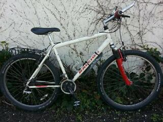Raleigh light weight mountain bike