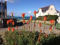 Cowrie, New Polzeath, Cornwall. Sleeps 9-10 in 4 bedrooms + games room. Sea & Rural views, Gardens