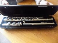 Flute for sale. In perfect condition. Rarely used.
