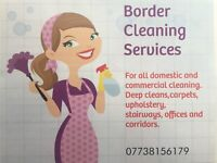 Domestic & Commercial cleaners