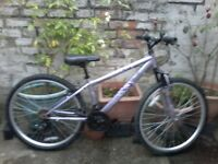 A very nice apollo teen or small ladys 15 inch frame 26 inch wheel bike for sale