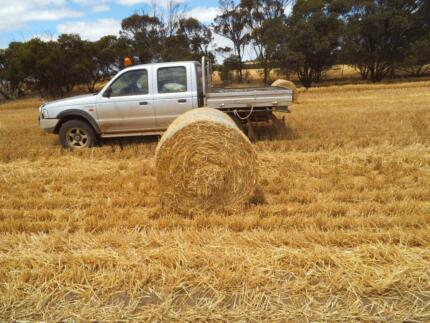 Barley straw mulch or feed Katanning Pallinup Area Preview
