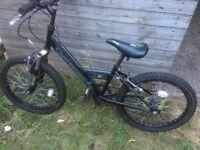 Raleigh bike for children wheel size 20