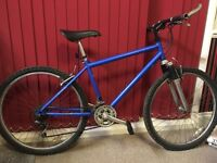 Gents Raleigh Mountain Bike