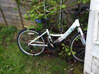 Dawes Children Bike. Never Ridden But Been Left Outside