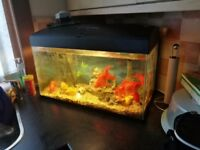 Aquarium for sale. 90ltr fish tank .