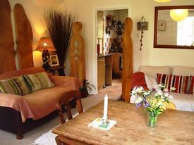 Lovely 3 bed house in Lewes, with beautiful big garden & large log cabin