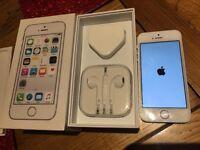 iPhone 5S, Silver, Unlocked