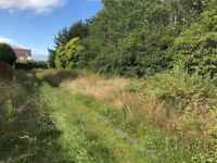 Woodland for sale, Aberdeen city, circa 1 acre, FREEHOLD
