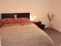 Beautiful rooms in the heart of Eastleigh