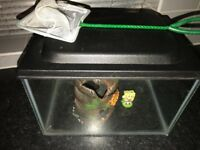 Small fish tank for sale.