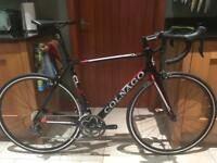 Colnago CLX Ultegra Carbon Road Bike Ex-Display trek specialized giant