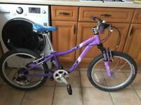 """Bike Specialized Hotrock """"20"""""""