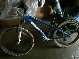 Expensive - Giant XTC 24 high quality mountain bike - 10 to 14 year old.