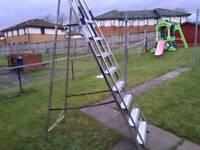 Tall stepladder £45
