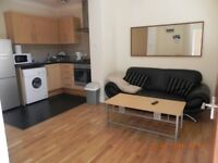 Beautiful fully furnished 1 bed flat with secure parking and FREE internet
