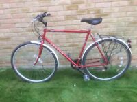 Gents Bike -- 24 inch frame
