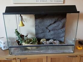 Vivarium for sale £80 ovno