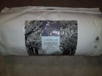 Brand new double white goose feather duvet