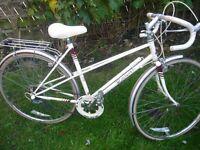 Vintage Raleigh bike perfect.