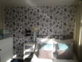 PROFESSIONAL HOUSE SHARE - Double rooms available now