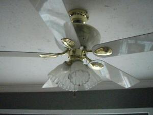 Beautiful Ceiling Fan with Lights (Best Offer)