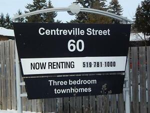 Renovated 3 Bedroom Town homes Available Dec 1St