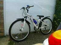 Lady's Apollo Mountain Bike