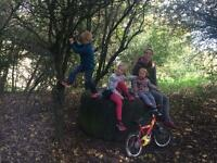 Au pair wanted