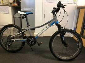 Giant XTC jr Kids Mountain Bike