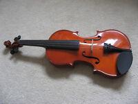 Violin + extras (in great condition)